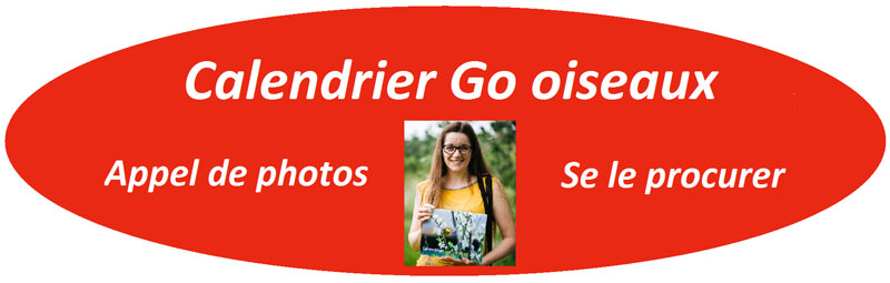 Calendrier-Go-oiseaux-2017