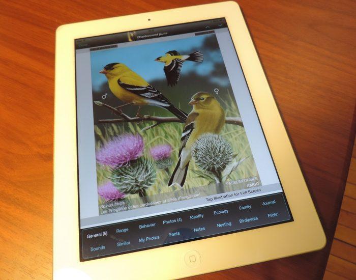 Les outils technologiques les plus utiles : applications d'oiseaux et sites webs