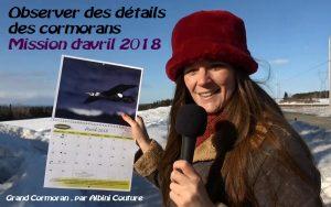 Mireille tient le calendrier à la page d'avril 2018, montrant un Grand Cormoran en vol