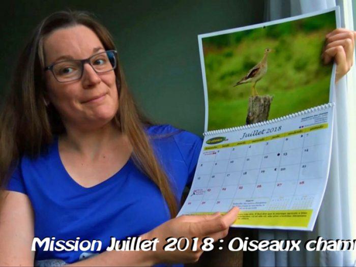 Oiseaux champêtres, la mission de juillet 2018!