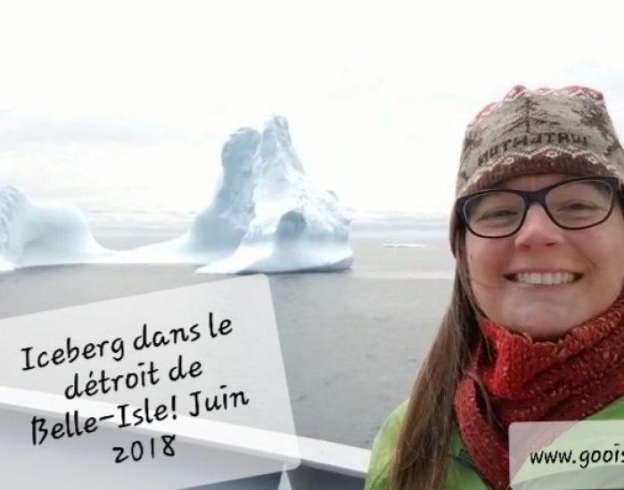 Vidéo : Iceberg dans le Détroit de Belle-Isle